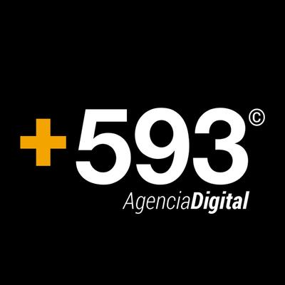 +593 Agencia Digital | Agency Vista