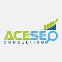 Ace SEO Consulting | Agency Vista