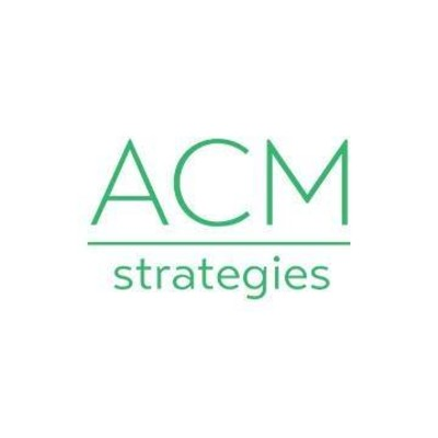 ACM Strategies | Agency Vista