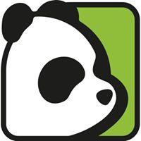 Avid Panda | Agency Vista