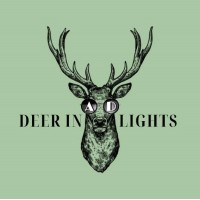 Deer in Ad Lights | Agency Vista