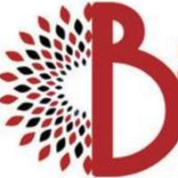 Ballistic Media Group