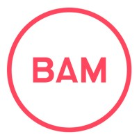 BAM Strategy | Agency Vista