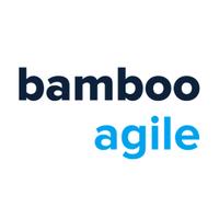 Bamboo Agile   Agency Vista