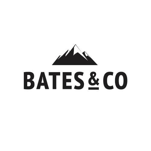 Bates & Co | Agency Vista