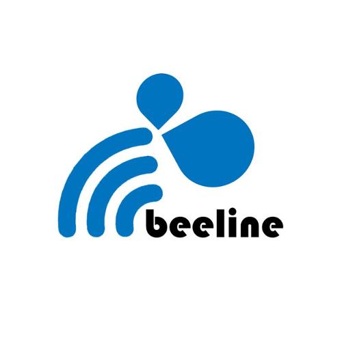 Beeline Now Consulting Services, Inc. | Agency Vista