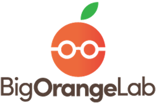 Big Orange Lab   Agency Vista