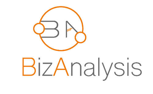 BizAnalysis | Agency Vista