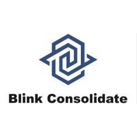 Blink Consolidate | Agency Vista