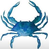 Blue Crab Connect   Agency Vista