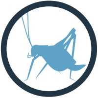 Blue Cricket Media | Agency Vista