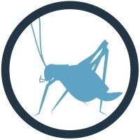 Blue Cricket Media | Agency Vista