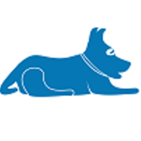Blue Lacy SEO | Agency Vista