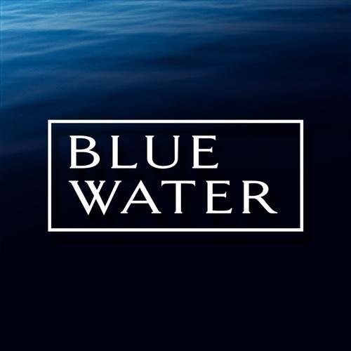 Blue Water Web | Agency Vista