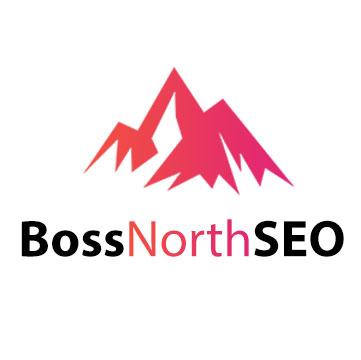 Boss North SEO   Agency Vista