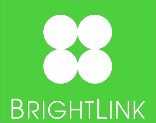 BrightLink Cargo and Movers LLC | Agency Vista