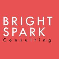Brightspark Consulting   Agency Vista