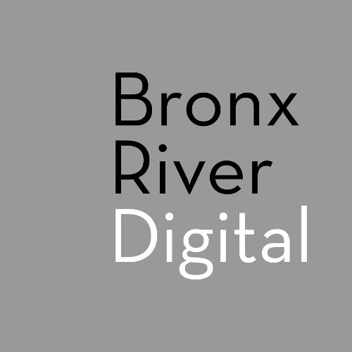 Bronx River Digital Media   Agency Vista
