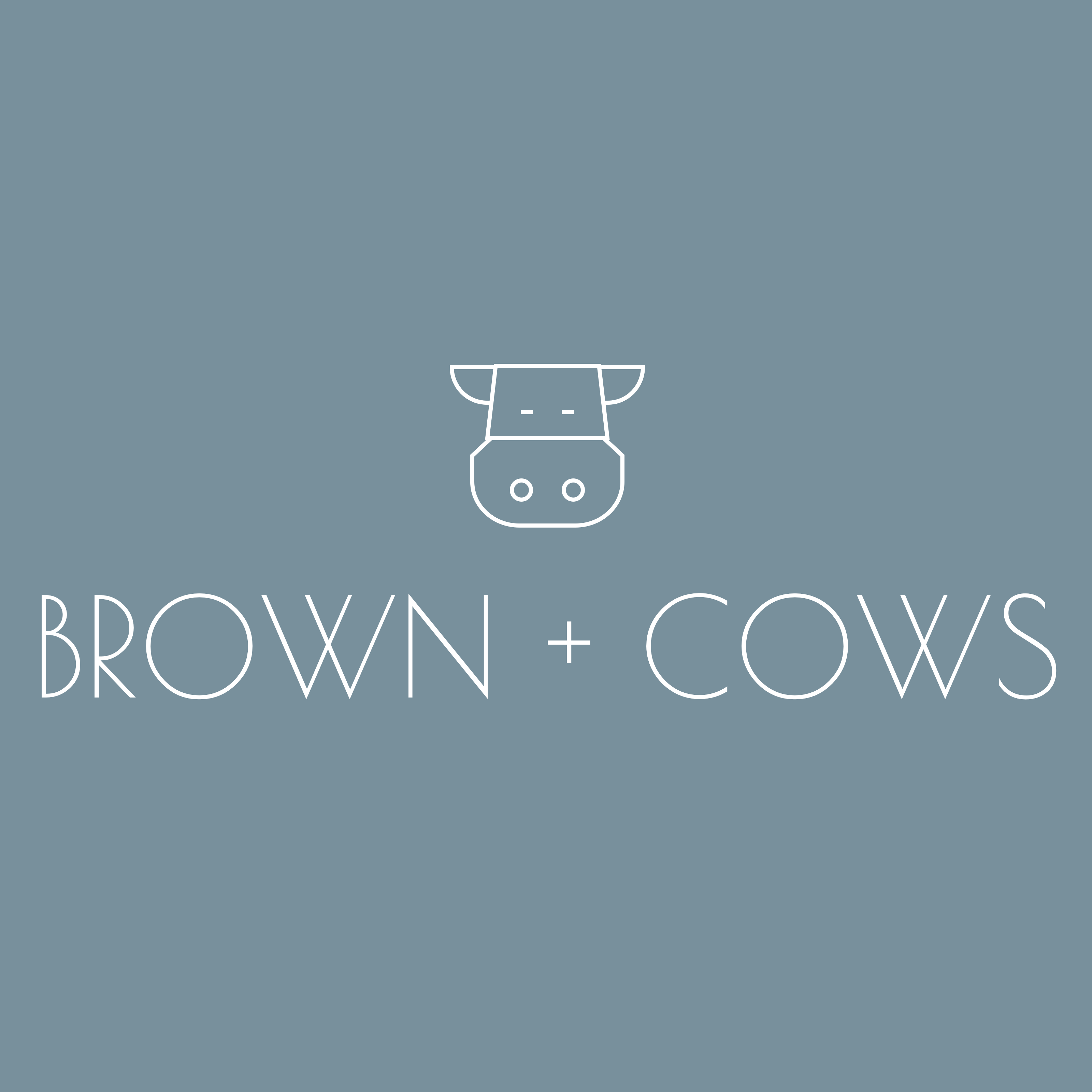 The Brown Cows | Agency Vista