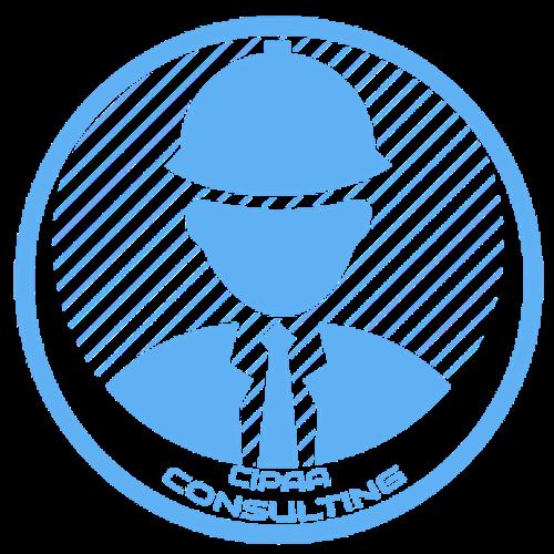 CIPAA Consulting | Agency Vista