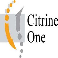 Citrine One Sdn Bhd | Agency Vista