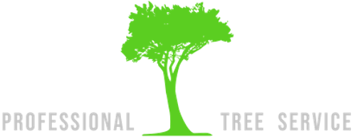 Clearwater Tree Service Pros | Agency Vista