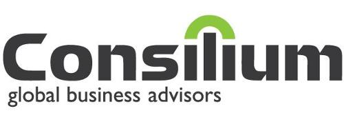 Consilium Global Business Advisors   Agency Vista