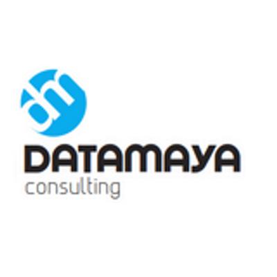 Datamaya Consulting   Agency Vista