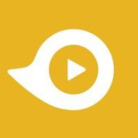 Demo Duck | Agency Vista