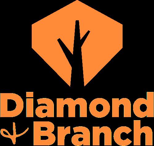 Diamond + Branch   Agency Vista
