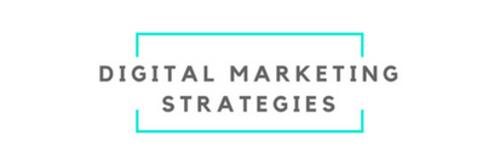 Digital Marketing Strategies LLC   Agency Vista
