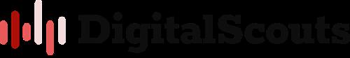 DigitalScouts | Agency Vista