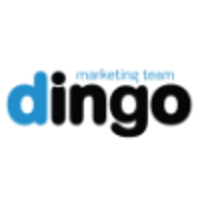 Dingo Marketing Team | Agency Vista