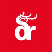 Dragon Rouge | Agency Vista