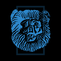 Dutch Lion. | Agency Vista