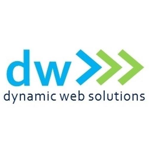 Dynamic Web Solutions GmbH | Agency Vista