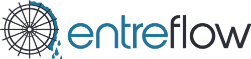 Entreflow Consulting Group | Agency Vista