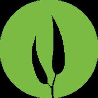 Eucalypt Media | Agency Vista