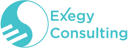 Exegy Consulting   Agency Vista