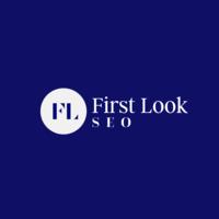 First Look SEO   Agency Vista
