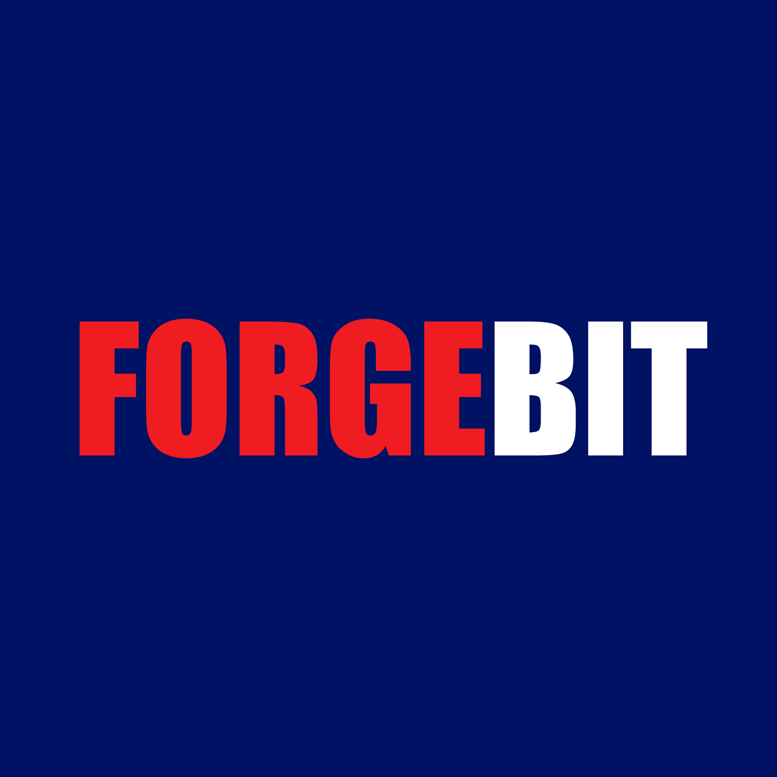 ForgeBIT | Agency Vista