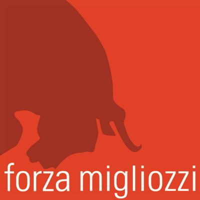 Forza Migliozzi | Agency Vista