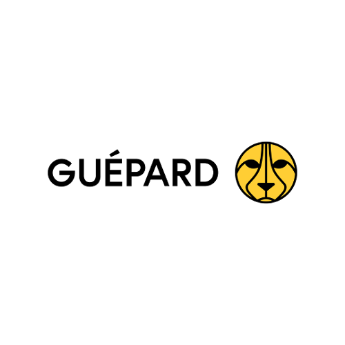 Guépard Communications   Agency Vista