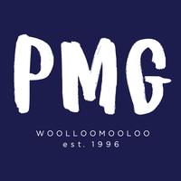 HOME OF PMG   Agency Vista