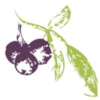 Huckleberry Branding | Agency Vista