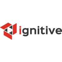Ignitive Web Design | Agency Vista