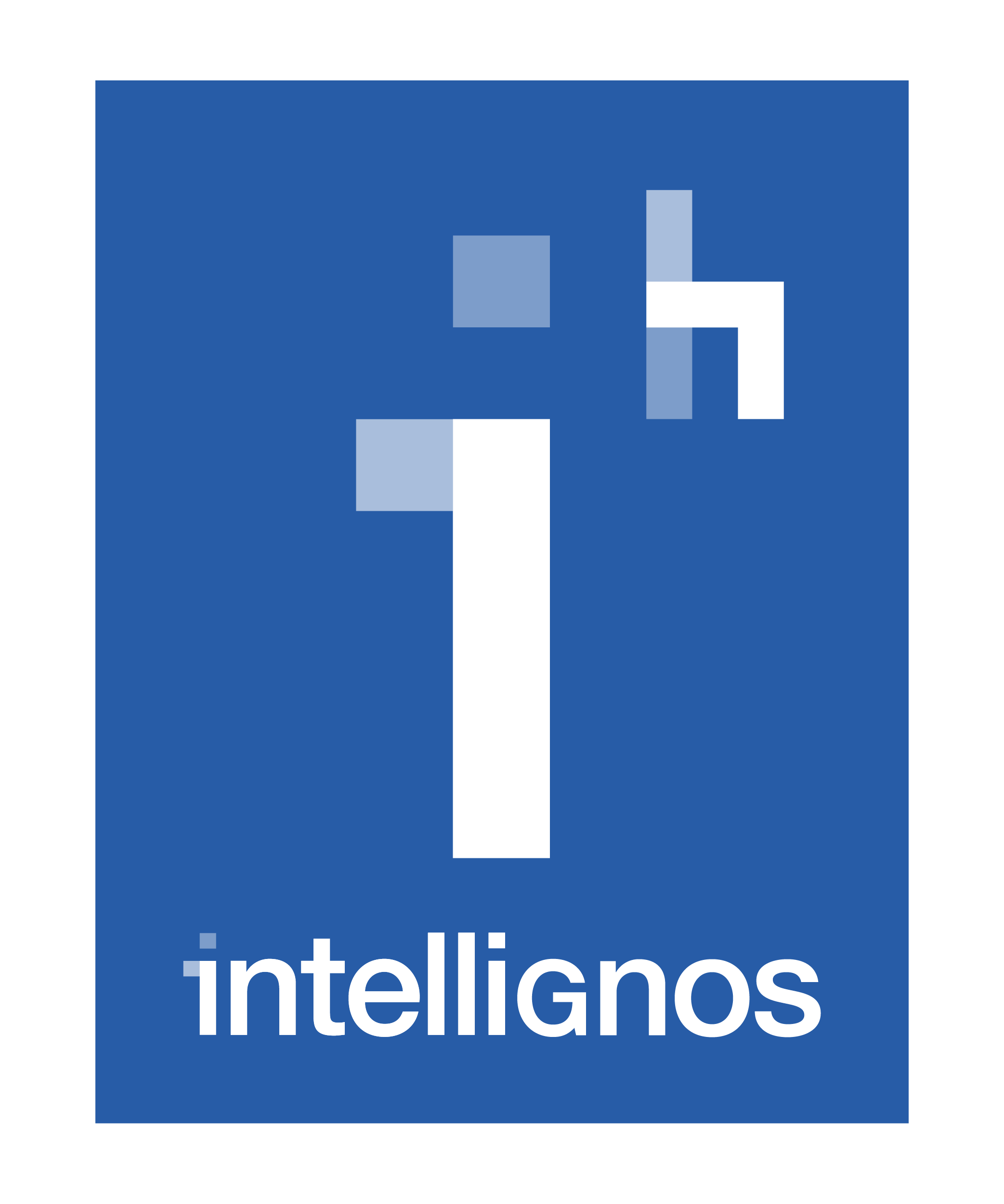 Intellignos (a Havas Group Company) | Agency Vista
