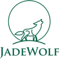 Jadewolf Marketing | Agency Vista