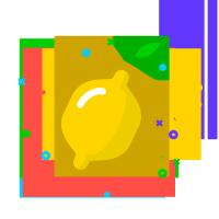 Lemon Digital Marketing | Agency Vista