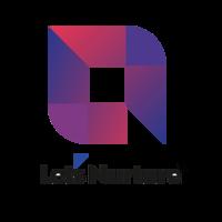 LetsNurture Infotech Pvt. Ltd. Leading IT Outsour | Agency Vista